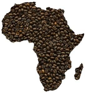 Coffea Excelsa, Foto:  darknightsky - Fotolia.com