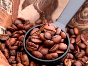 Konsum vom Kafee weltweit